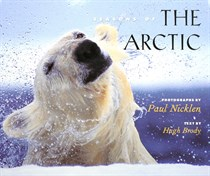 SEASON OF THE ARCTIC - 133464